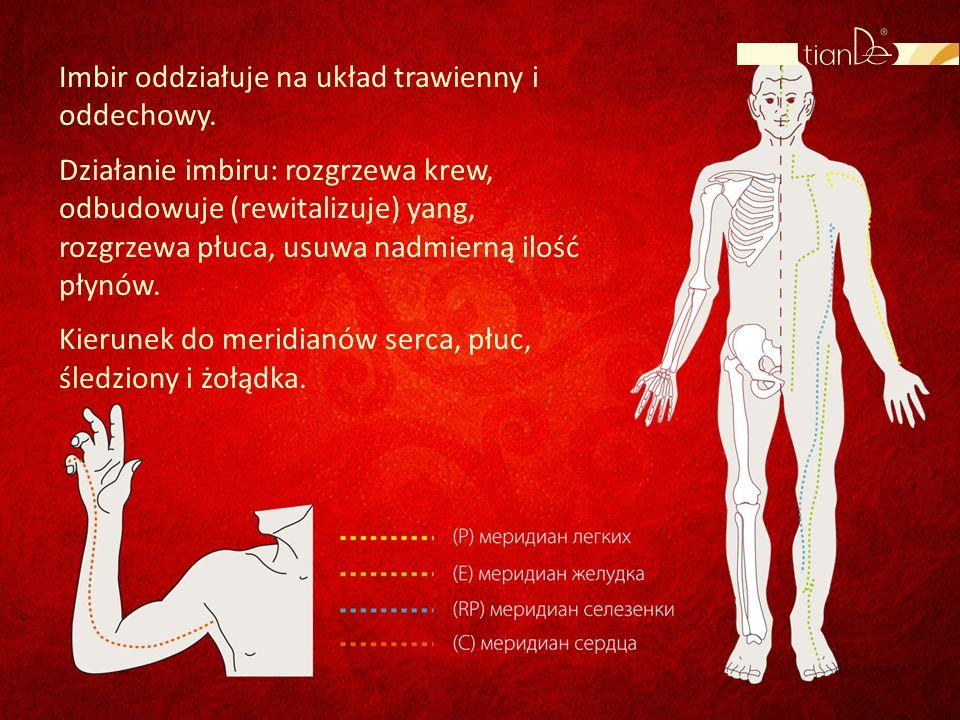 Imbir oddziałuje na układ trawienny i oddechowy.