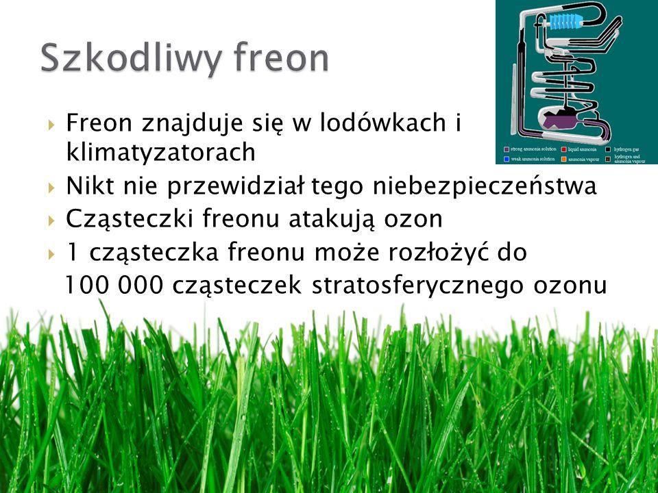 Szkodliwy freon Freon znajduje się w lodówkach i klimatyzatorach