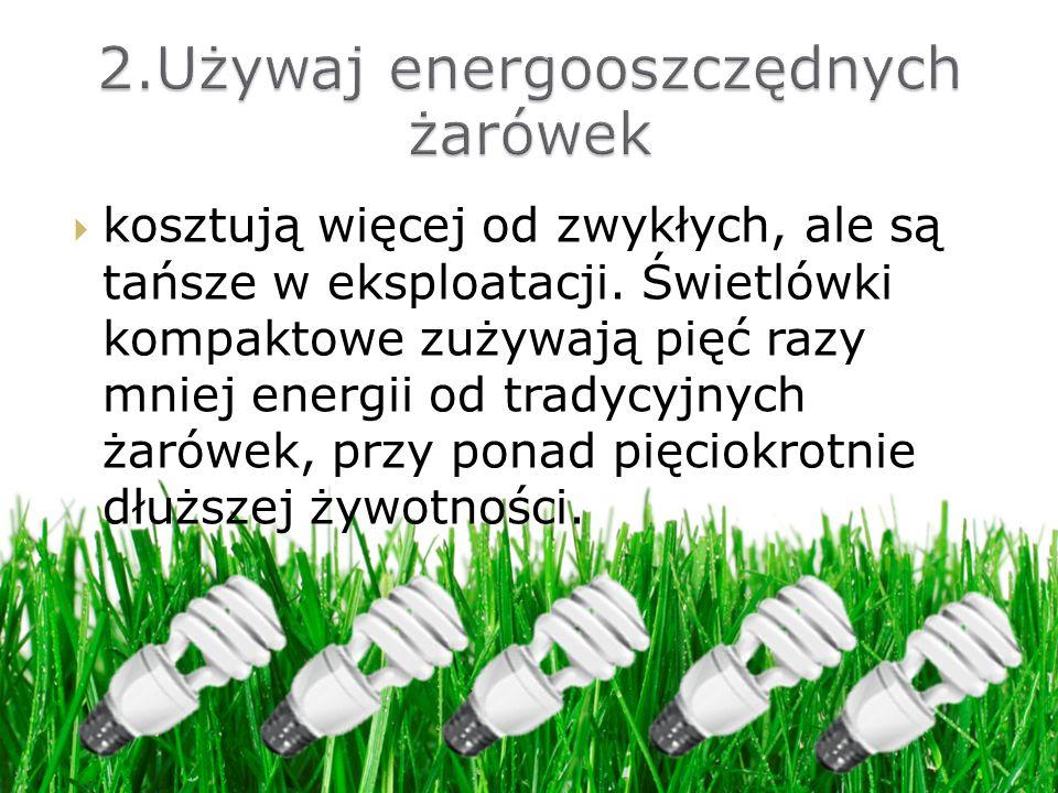 2.Używaj energooszczędnych żarówek