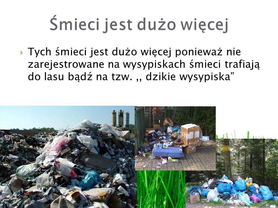Śmieci jest dużo więcej