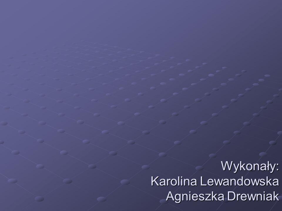 Wykonały: Karolina Lewandowska Agnieszka Drewniak