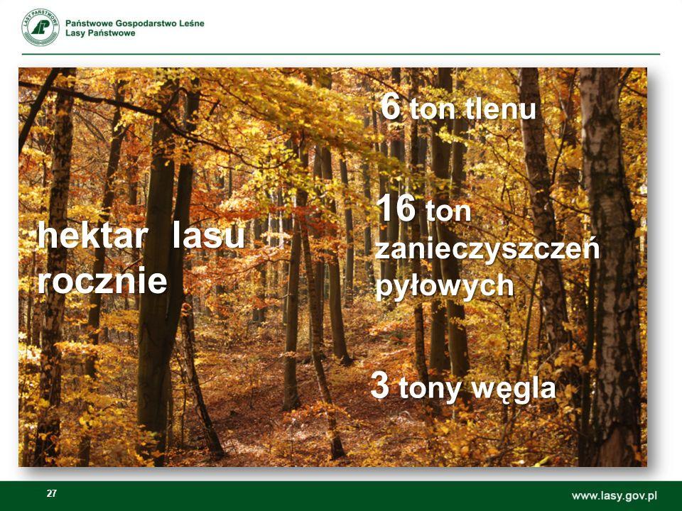 6 ton tlenu 16 ton hektar lasu rocznie 3 tony węgla zanieczyszczeń