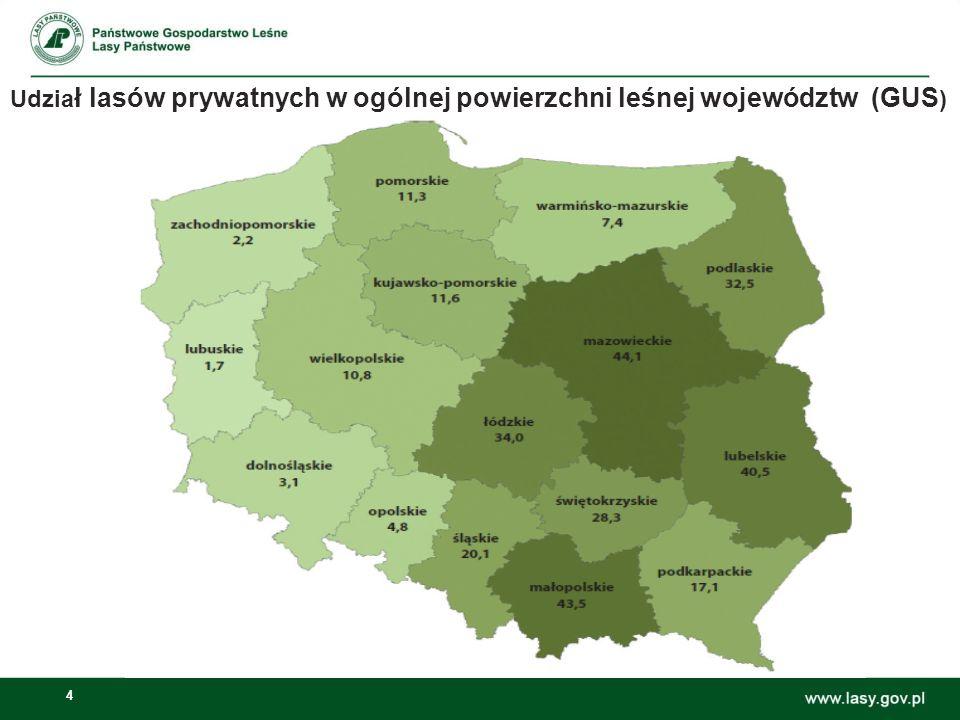 Udział lasów prywatnych w ogólnej powierzchni leśnej województw (GUS)