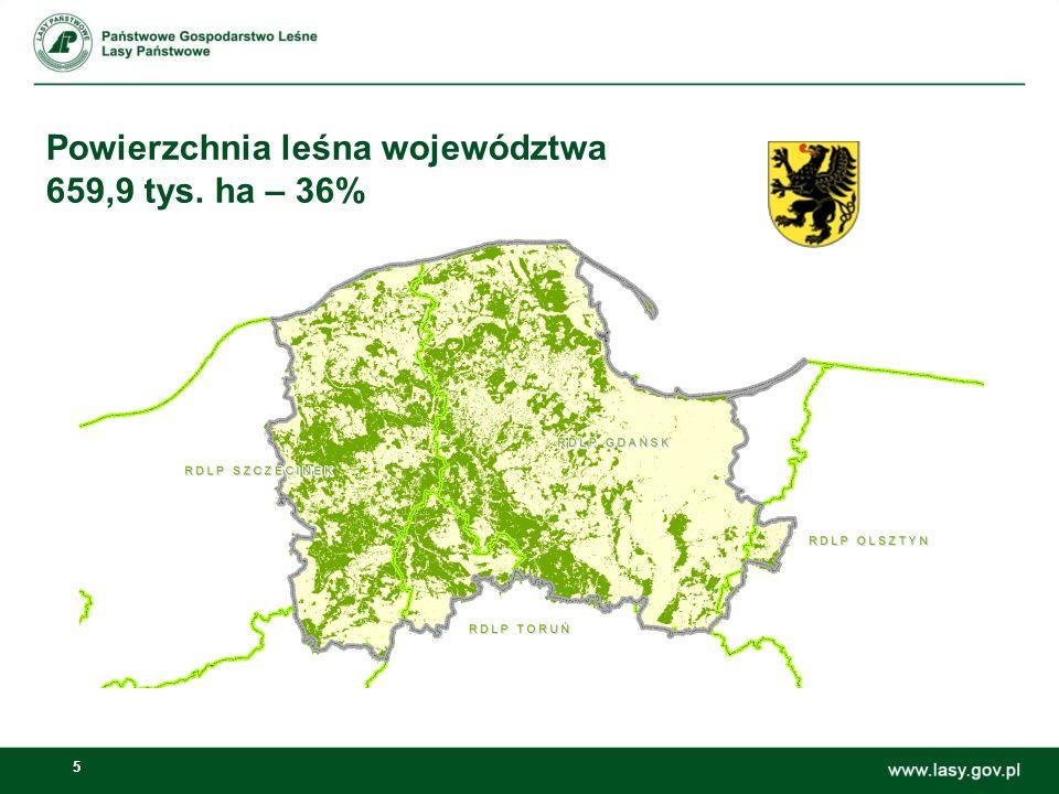 Powierzchnia leśna województwa 659,9 tys. ha – 36%