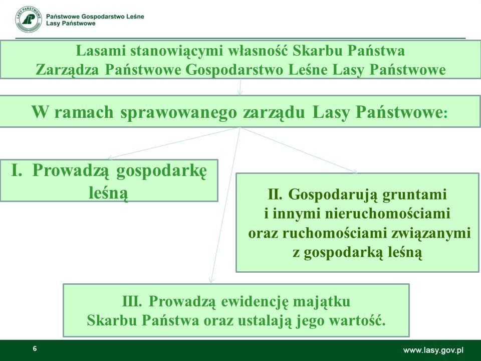 W ramach sprawowanego zarządu Lasy Państwowe: