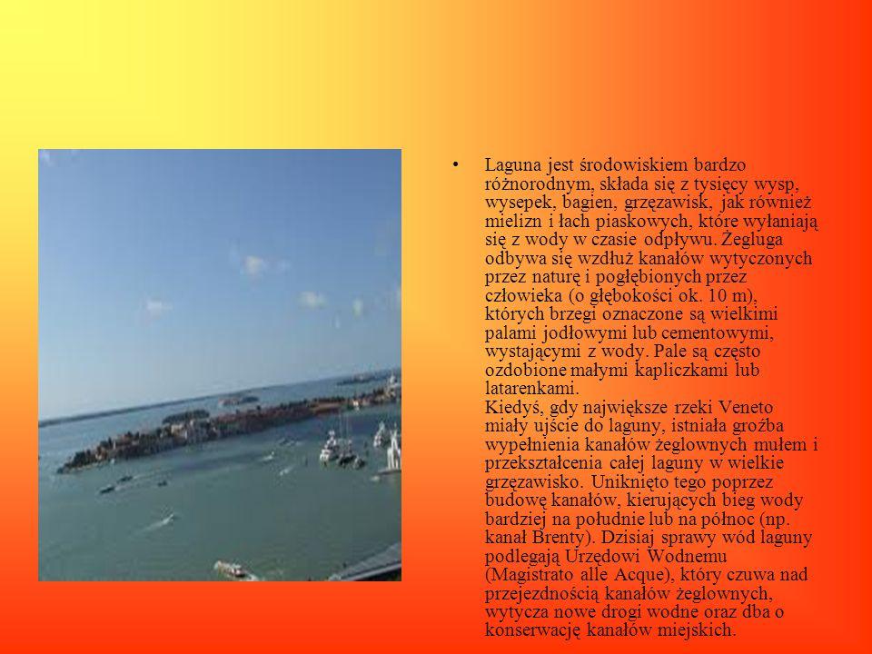 Laguna jest środowiskiem bardzo różnorodnym, składa się z tysięcy wysp, wysepek, bagien, grzęzawisk, jak również mielizn i łach piaskowych, które wyłaniają się z wody w czasie odpływu.