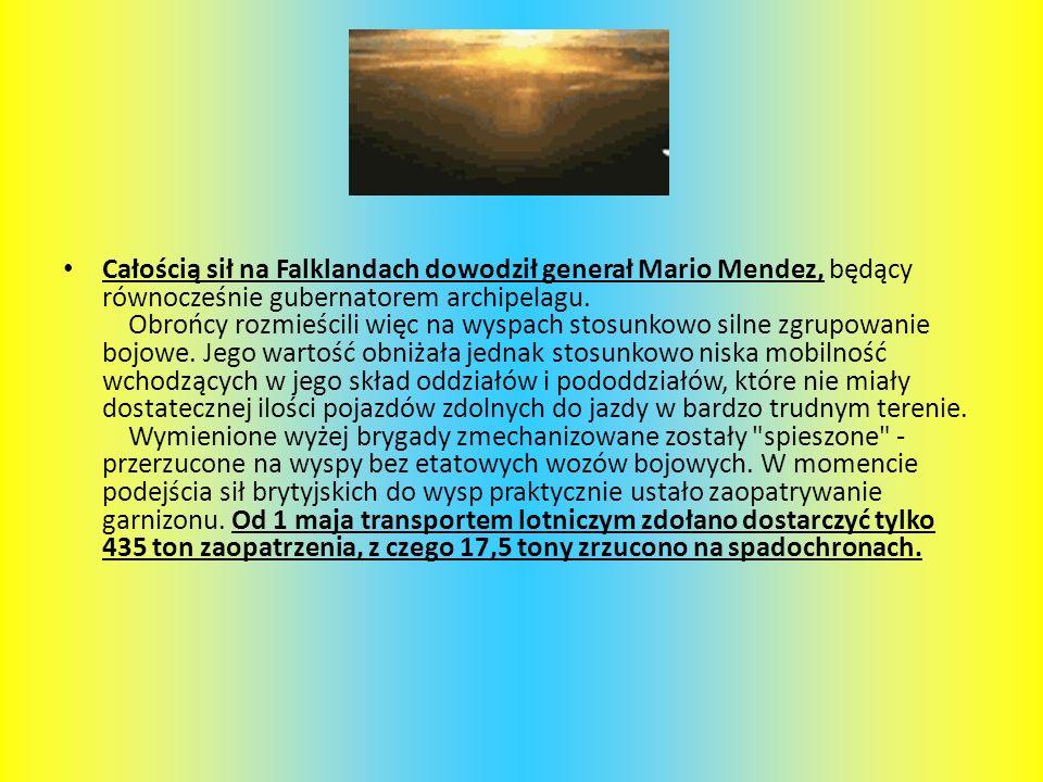 Całością sił na Falklandach dowodził generał Mario Mendez, będący równocześnie gubernatorem archipelagu.
