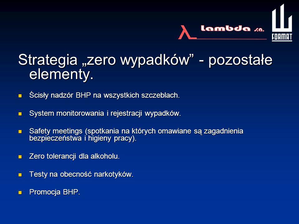 """Strategia """"zero wypadków - pozostałe elementy."""