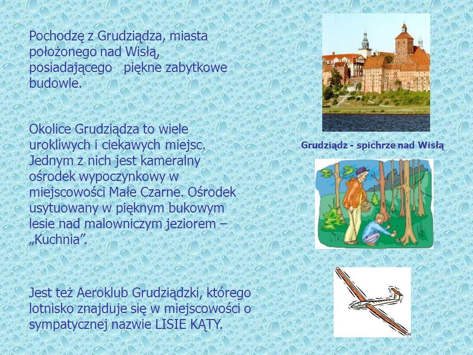 Pochodzę z Grudziądza, miasta położonego nad Wisłą, posiadającego piękne zabytkowe budowle.