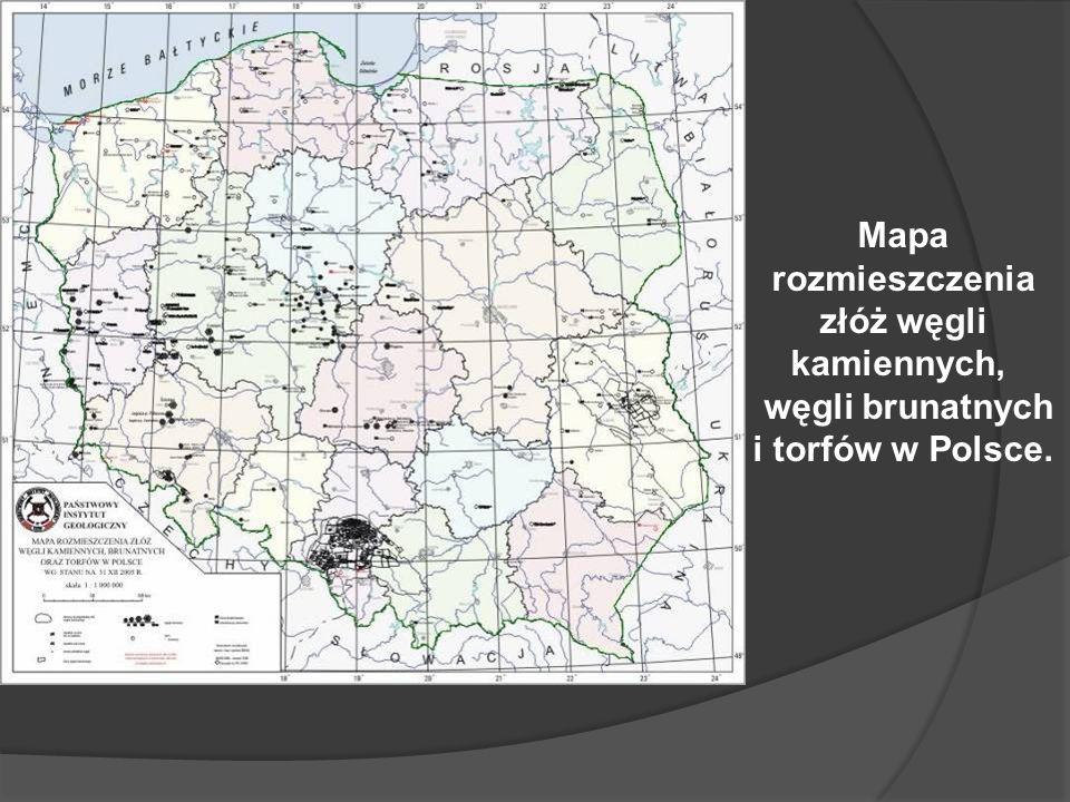 węgli brunatnych i torfów w Polsce.