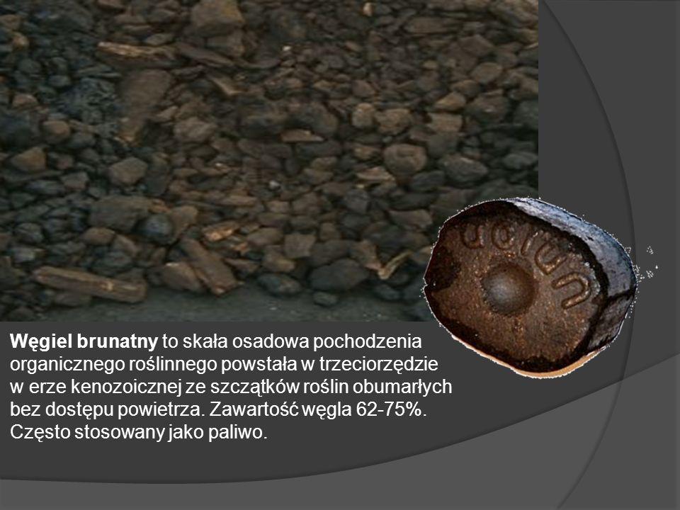 Węgiel brunatny to skała osadowa pochodzenia organicznego roślinnego powstała w trzeciorzędzie w erze kenozoicznej ze szczątków roślin obumarłych bez dostępu powietrza.