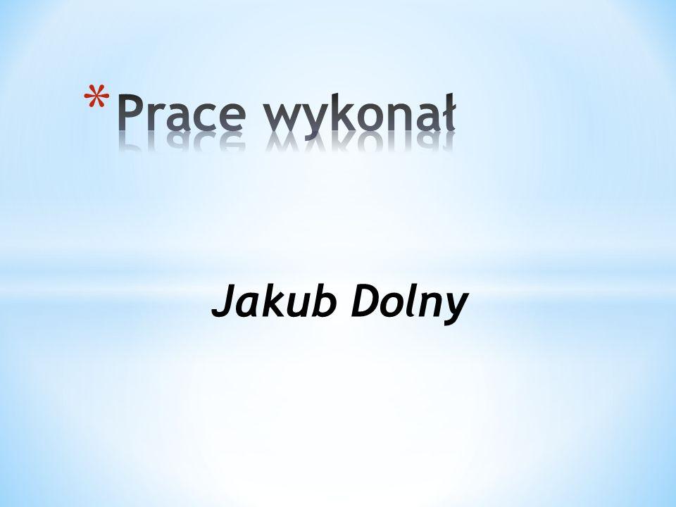 Prace wykonał Jakub Dolny