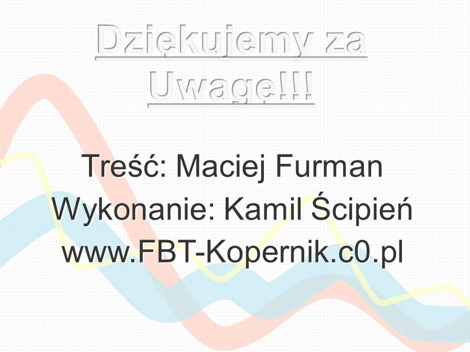 Wykonanie: Kamil Ścipień