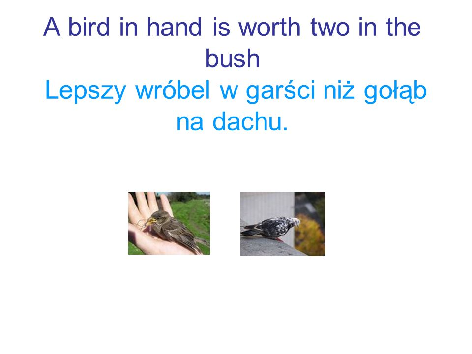 A bird in hand is worth two in the bush Lepszy wróbel w garści niż gołąb na dachu.