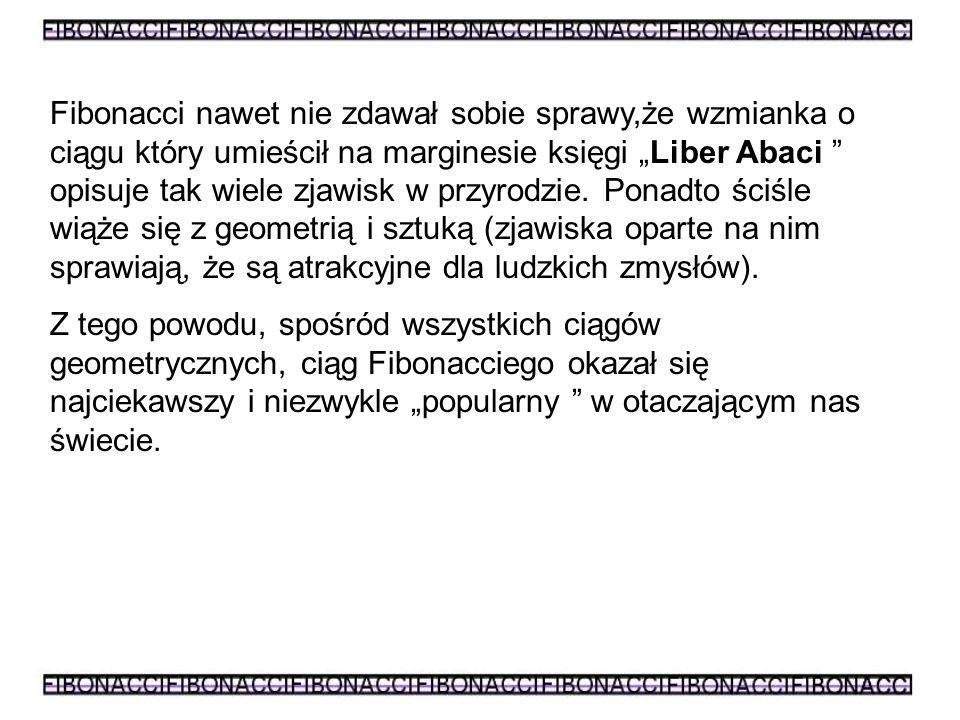 """Fibonacci nawet nie zdawał sobie sprawy,że wzmianka o ciągu który umieścił na marginesie księgi """"Liber Abaci opisuje tak wiele zjawisk w przyrodzie. Ponadto ściśle wiąże się z geometrią i sztuką (zjawiska oparte na nim sprawiają, że są atrakcyjne dla ludzkich zmysłów)."""