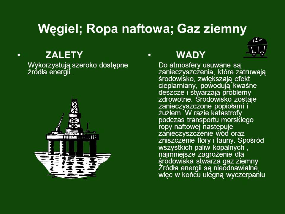 Węgiel; Ropa naftowa; Gaz ziemny