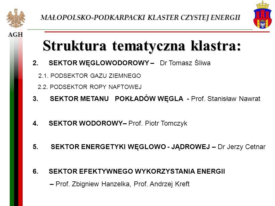 Struktura tematyczna klastra: