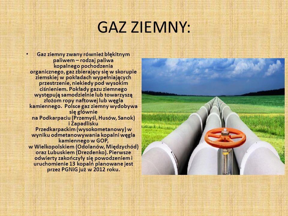 GAZ ZIEMNY: