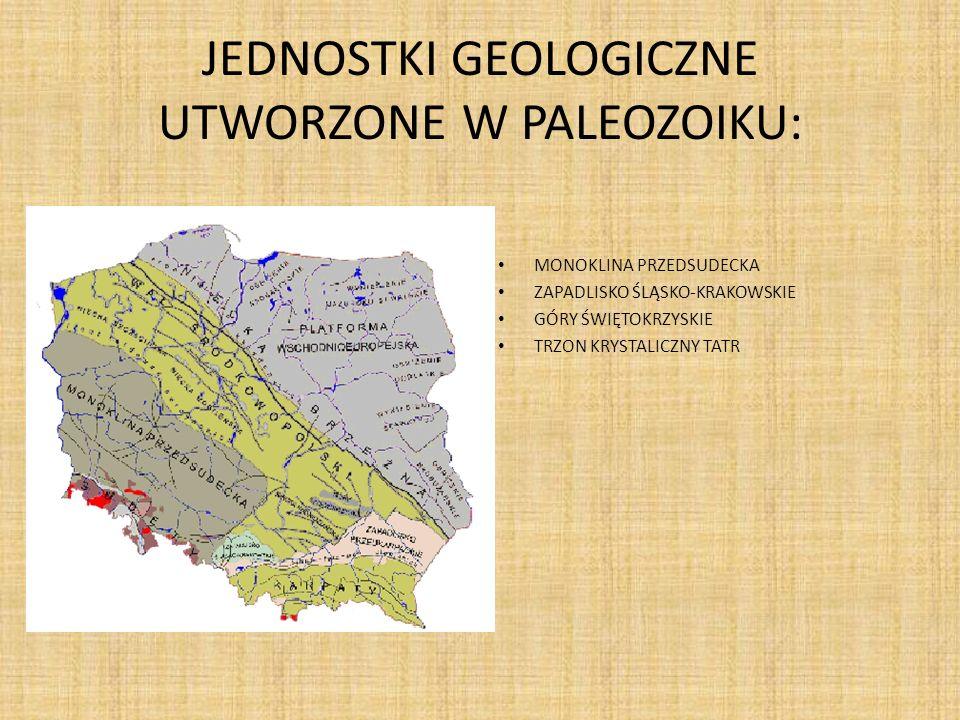 JEDNOSTKI GEOLOGICZNE UTWORZONE W PALEOZOIKU: