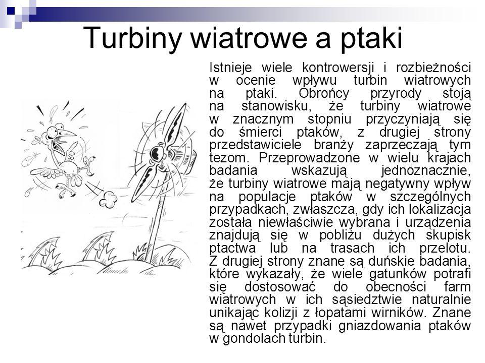 Turbiny wiatrowe a ptaki
