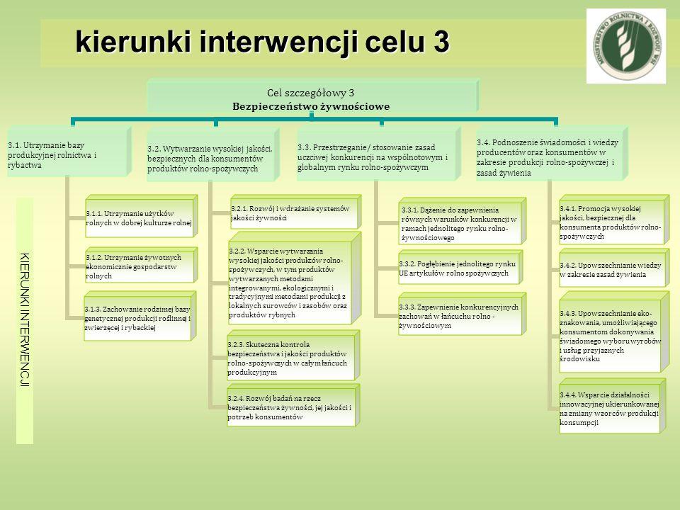 kierunki interwencji celu 3