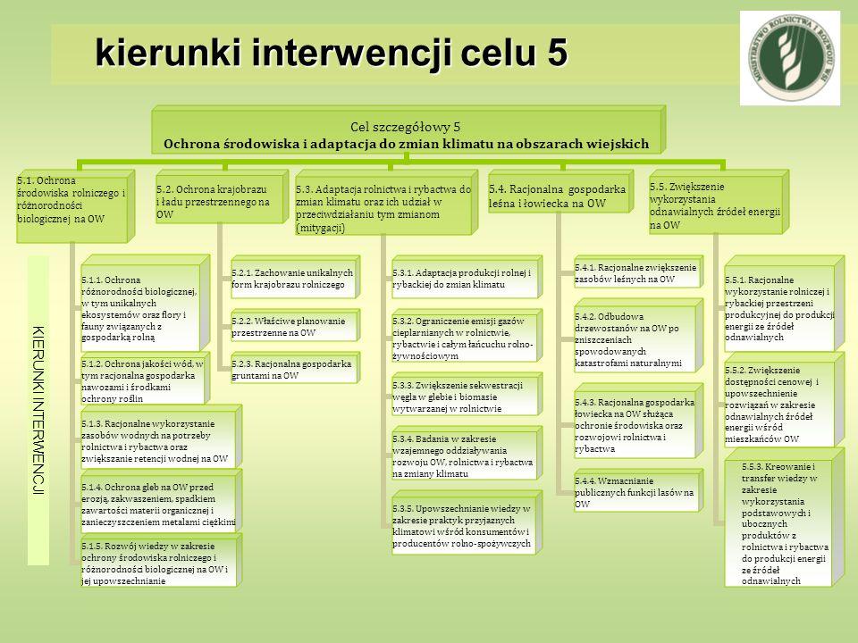 kierunki interwencji celu 5