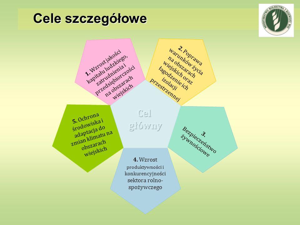 Cele szczegółowe Cel główny
