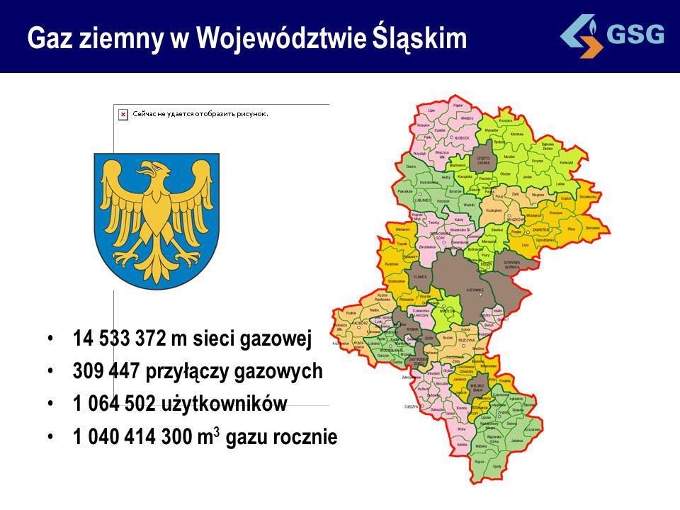 Gaz ziemny w Województwie Śląskim