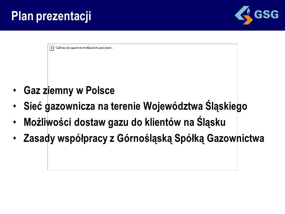 Plan prezentacji Gaz ziemny w Polsce