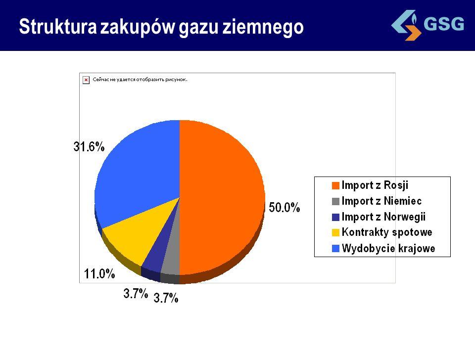 Struktura zakupów gazu ziemnego