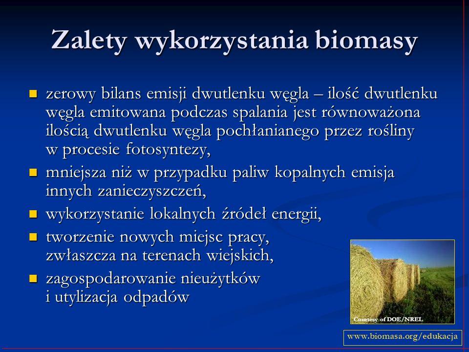 Zalety wykorzystania biomasy