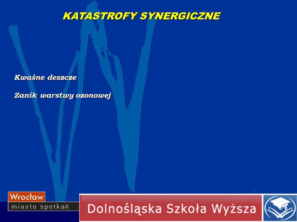 KATASTROFY SYNERGICZNE