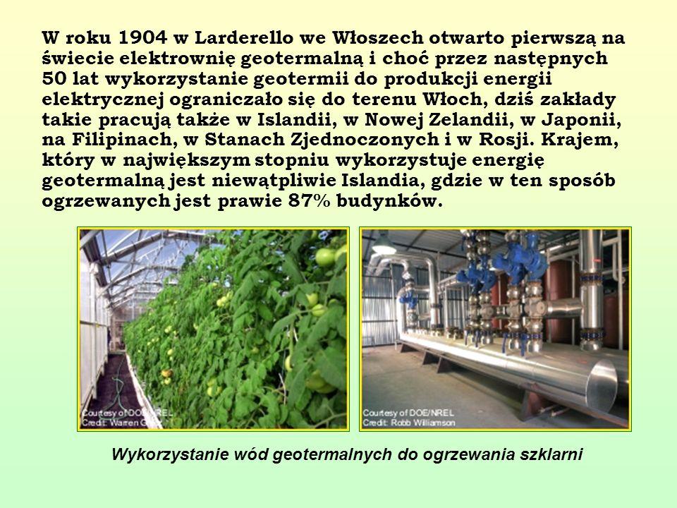 W roku 1904 w Larderello we Włoszech otwarto pierwszą na świecie elektrownię geotermalną i choć przez następnych 50 lat wykorzystanie geotermii do produkcji energii elektrycznej ograniczało się do terenu Włoch, dziś zakłady takie pracują także w Islandii, w Nowej Zelandii, w Japonii, na Filipinach, w Stanach Zjednoczonych i w Rosji. Krajem, który w największym stopniu wykorzystuje energię geotermalną jest niewątpliwie Islandia, gdzie w ten sposób ogrzewanych jest prawie 87% budynków.