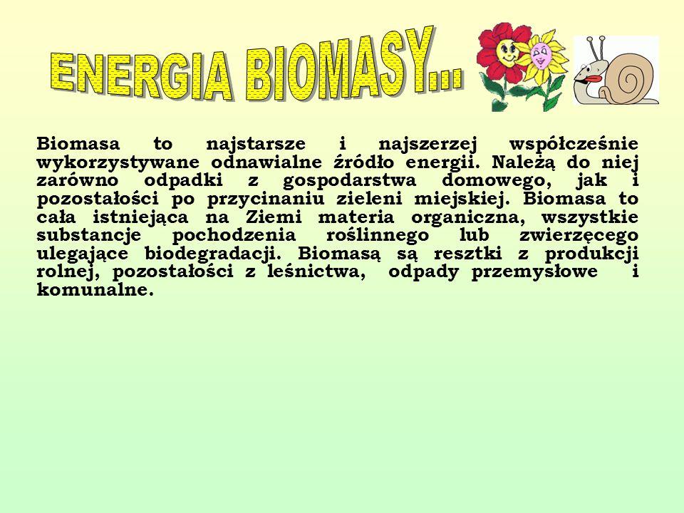 ENERGIA BIOMASY...