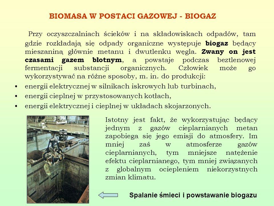 BIOMASA W POSTACI GAZOWEJ - BIOGAZ