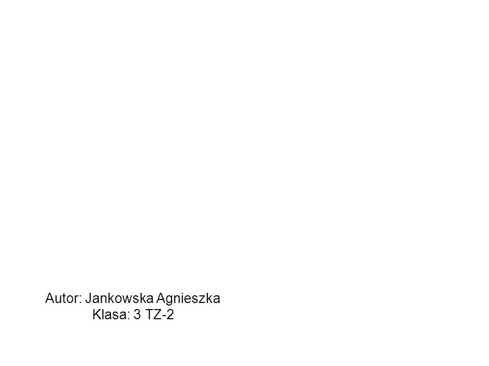 Autor: Jankowska Agnieszka Klasa: 3 TZ-2
