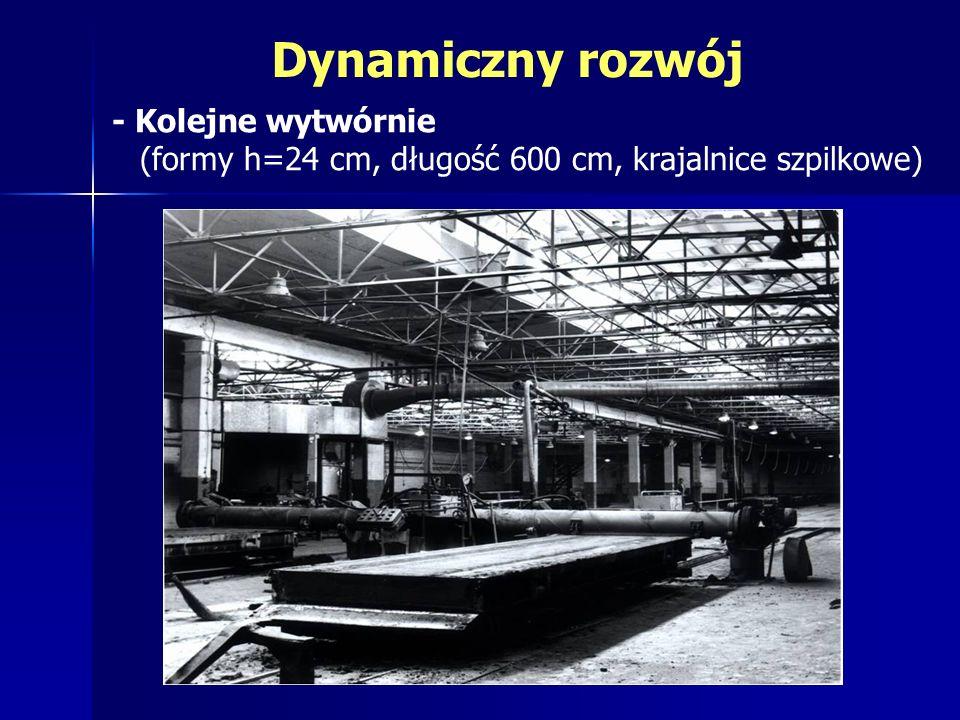Dynamiczny rozwój - Kolejne wytwórnie