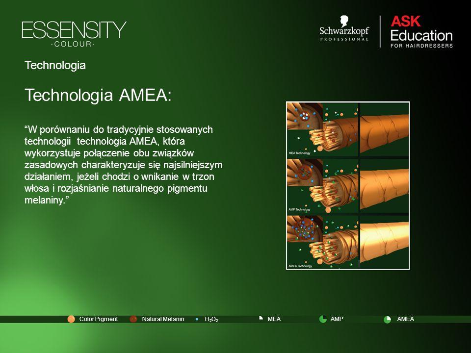 Technologia AMEA: Technologia