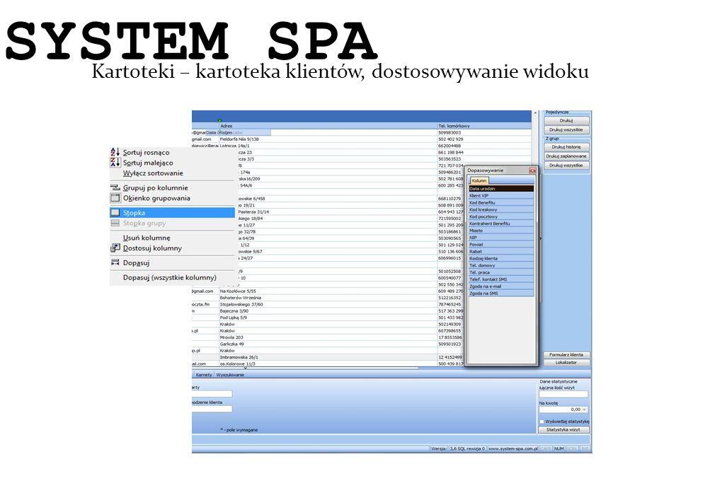 SYSTEM SPA Kartoteki – kartoteka klientów, dostosowywanie widoku