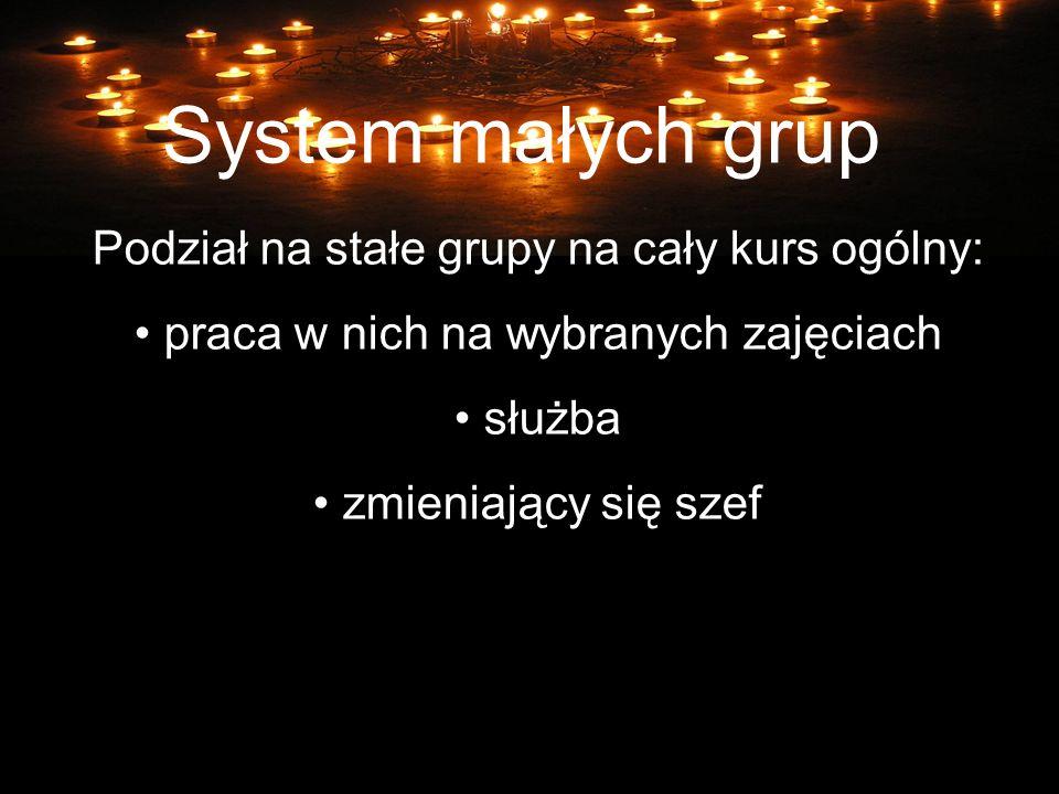 System małych grup Podział na stałe grupy na cały kurs ogólny: