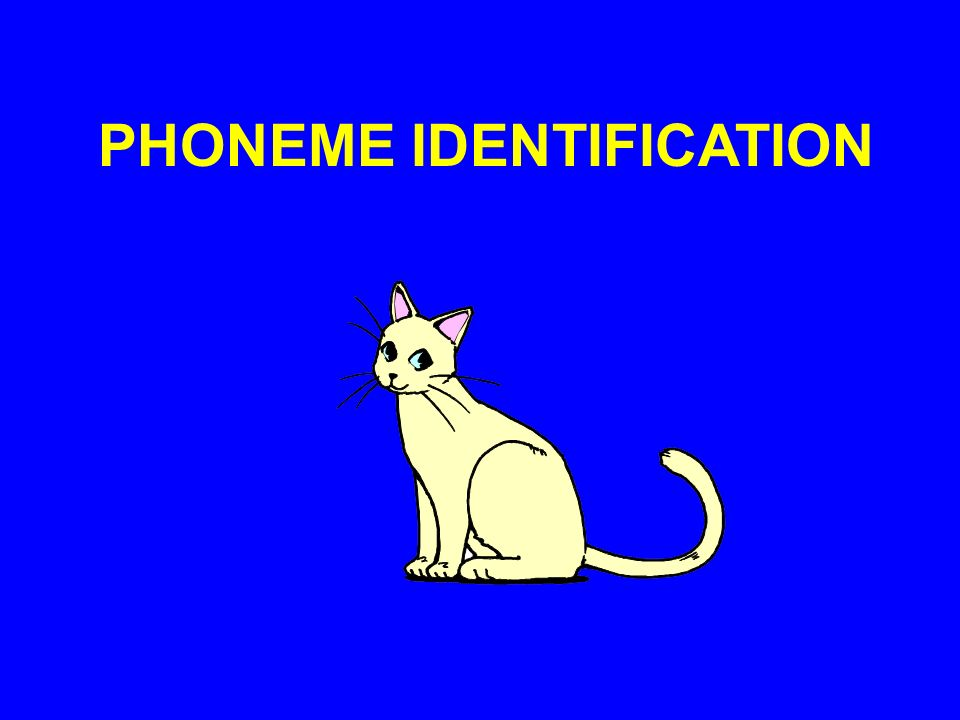 PHONEME IDENTIFICATION