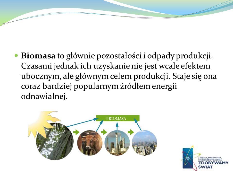 Biomasa to głównie pozostałości i odpady produkcji