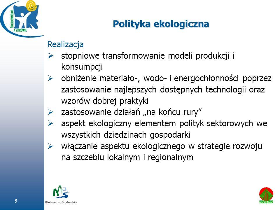 Polityka ekologiczna Realizacja