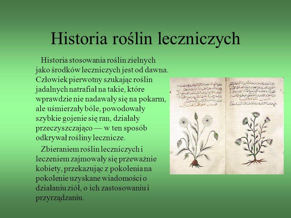 Historia roślin leczniczych