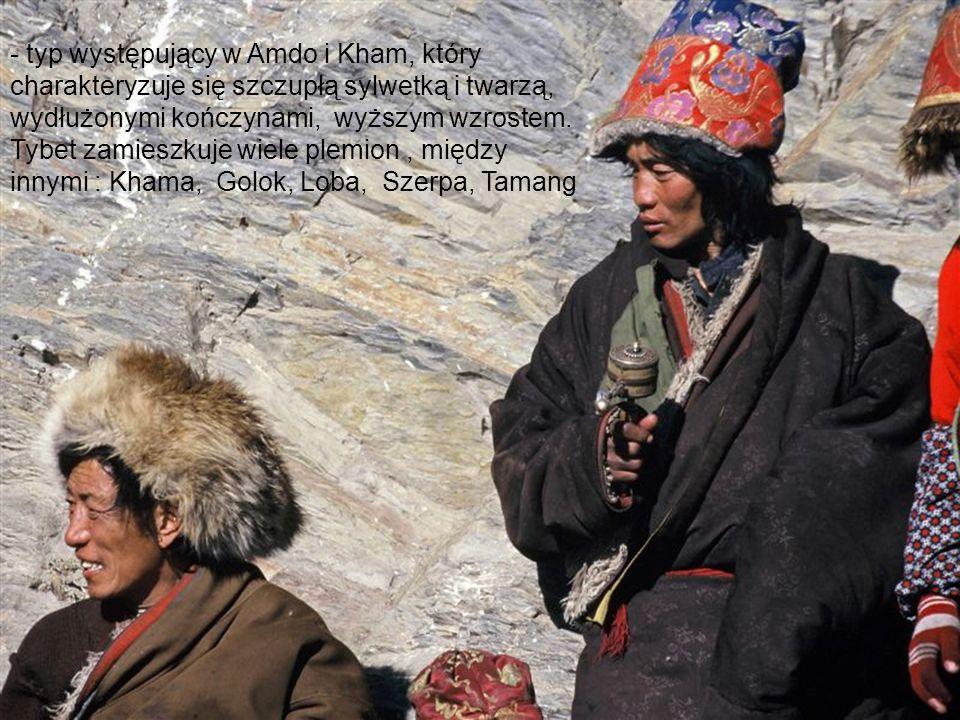 - typ występujący w Amdo i Kham, który charakteryzuje się szczupłą sylwetką i twarzą, wydłużonymi kończynami, wyższym wzrostem.