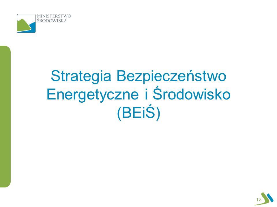 Strategia Bezpieczeństwo Energetyczne i Środowisko