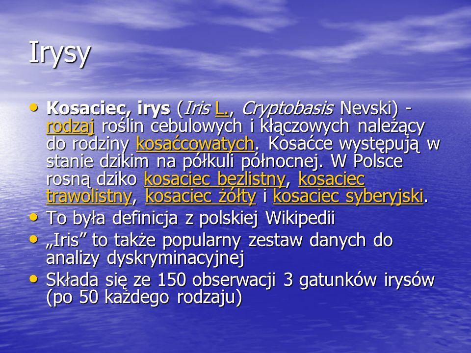 Irysy