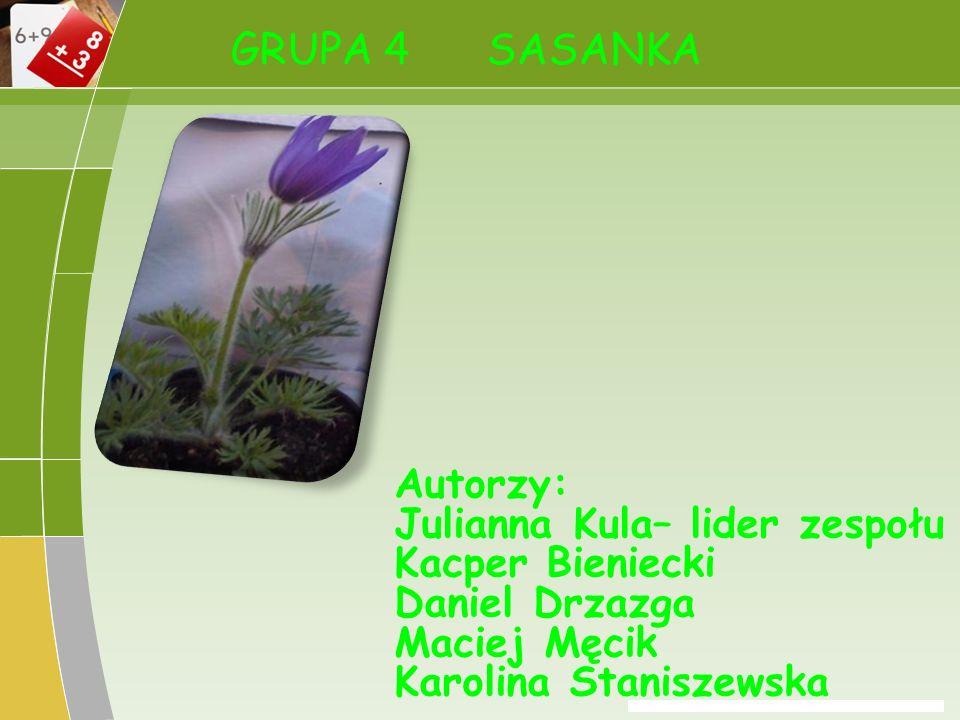 GRUPA 4 SASANKA Autorzy: Julianna Kula– lider zespołu Kacper Bieniecki