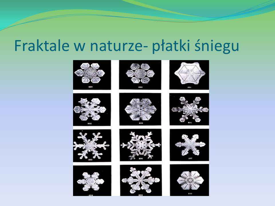 Fraktale w naturze- płatki śniegu