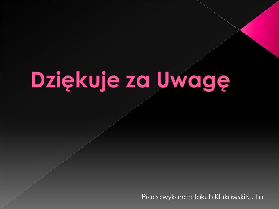 Dziękuje za Uwagę Prace wykonał: Jakub Klukowski Kl. 1a